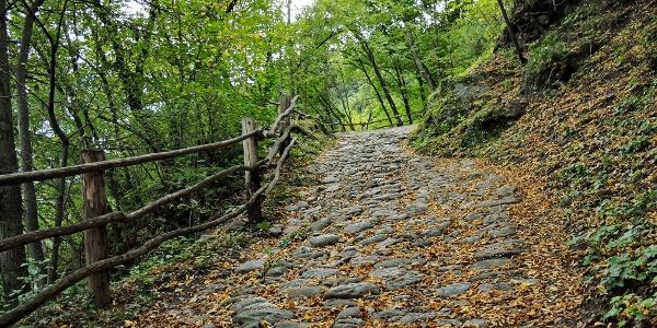 Der alte Pflasterweg zur Trostburg
