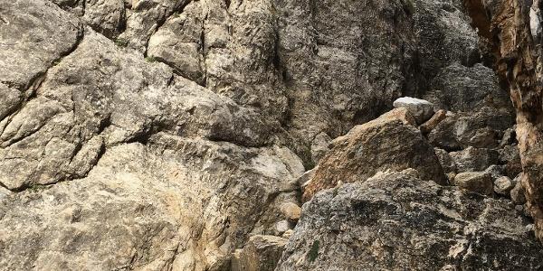 freie leichte Kletterei