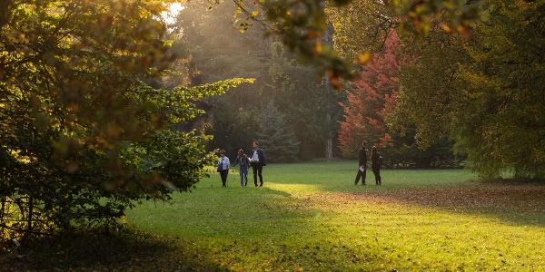 The Arboretum of Szarvas (Pepi Garden)