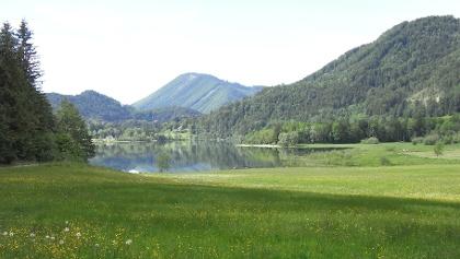 Blick vom Hintersee-Rundwanderweg zum Badeplatz Taugl-Zipf