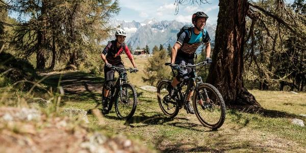 Mountain bikers, Wichilwald / Bürchen