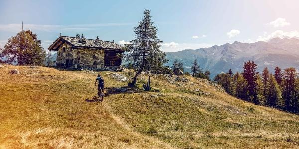 Mountainbiker im Moosalpregion