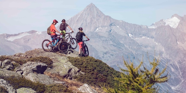 Mountain bikers in the region of Grächen