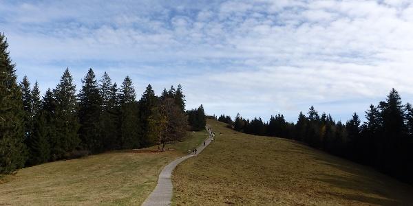 Aufstieg zum Berggasthof Neureuth