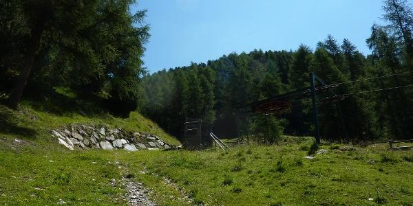 Am Waldrand entlang wandert man auf guten Wanderwegen ins Zaytal.