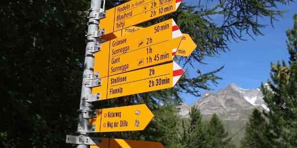 Signalisation au départ de la randonnée. Le chemin mène vers Grünsee.