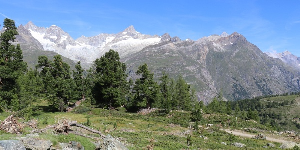 Alpine pastures at the turnpoint of the hike