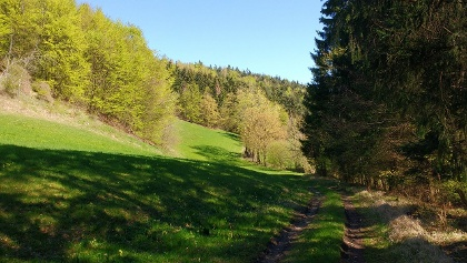 Hinunter nach Trandorf