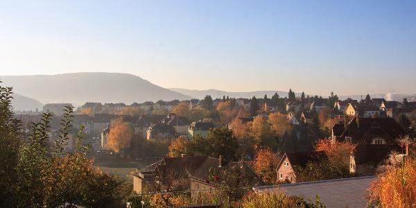 Morgennebel Stadt Freital