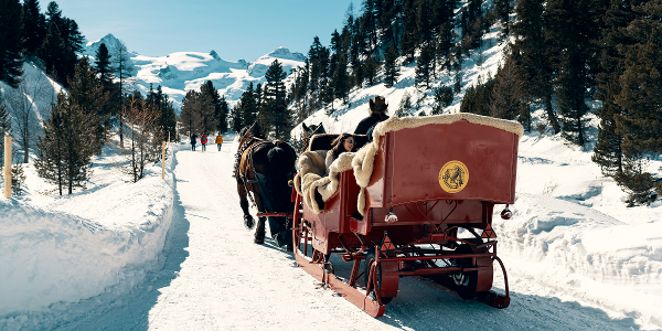 Carriage ride into Val Roseg