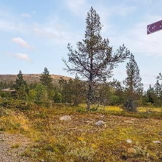 Pallastunturin luontokeskukselta Pallaskodalle vie helppokulkuinen sorastettu reitti