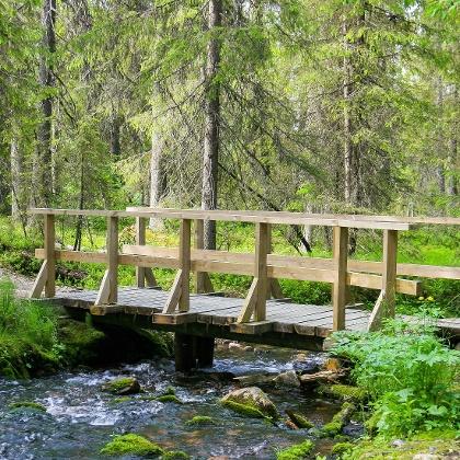 Varkaanojan silta Kesänkijärvellä