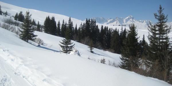 Alp Pazzola in Sicht