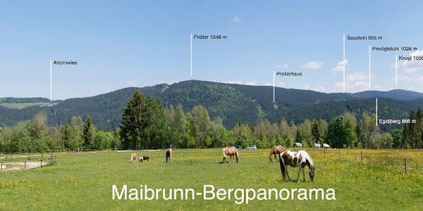 Panorama von Maibrunn