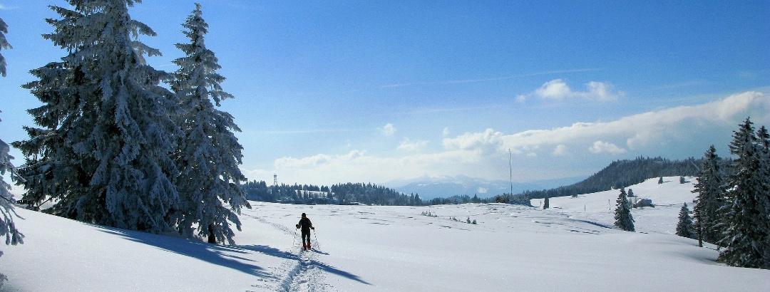 Schneeschuhwandern auf den Grenchenbergen.
