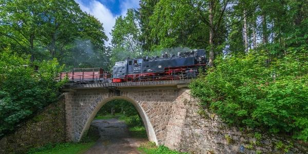 Brockenbahn in Elend
