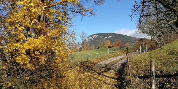 Blick auf den Gösing aus dem Raum der Mariengedenkstätte oberhalb Vöstenhof