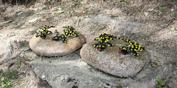 Stein Salamander auf dem Bermersbacher Glücksweg
