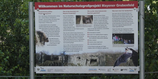 Informationen Fledermausweg