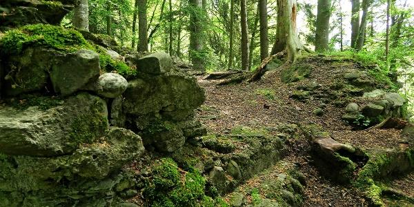 Ruine Riedburg.
