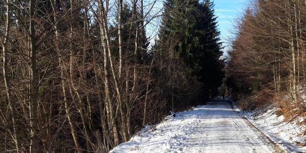 Verlauf der Forststraße