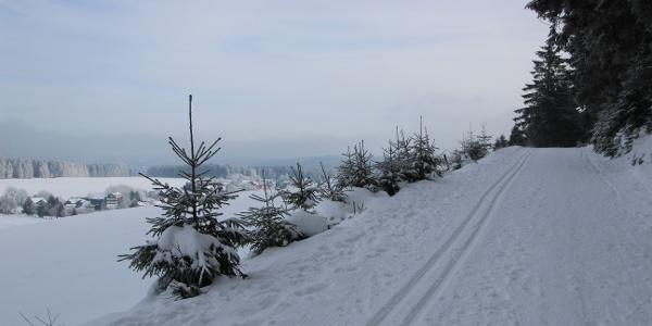 Skiwanderweg Dürre Fichte