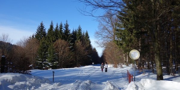 Winterwandern am Rennsteig