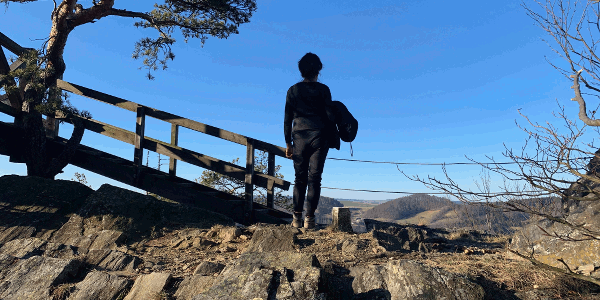 Gruberwarte Buschandlwand Wachau