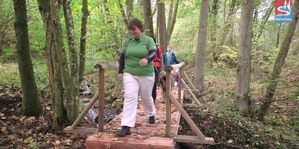 Nahesteig - Wandern zwischen Wasser, Fels und Edelstein