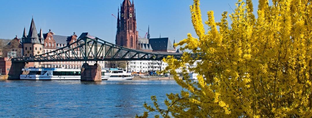 Der Eiserne Steg mit dem Frankfurter Dom im Hintergrund