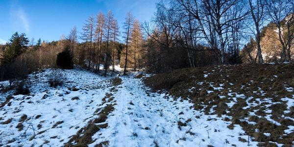 die ersten 300 Höhenmeter zu wenig Schnee!