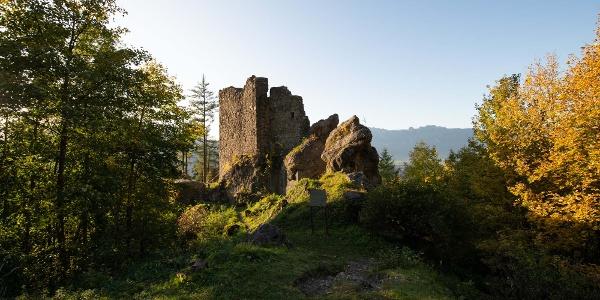 Burgruine Schalun (Wildschloss)