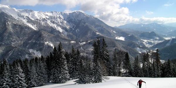 Blahstein: Aufstieg über die schöne große Wiese zum Waldrand, 1260 m, links die Schneealpe