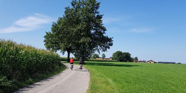 Auf dem Weg nach Moosbach