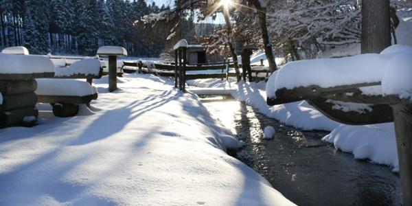 Hiebammen Hütte Brilon