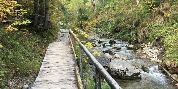 Weg westlich des Schwarzenbach