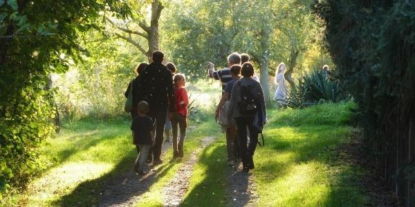 Exkursion im Teichgebiet
