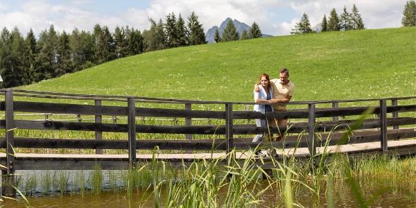 Weiher Bruggen Pond in Vöran