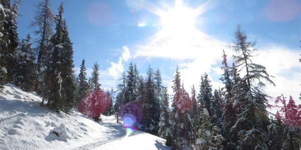 Paesaggio invernale alla Malga Moschwaldalm