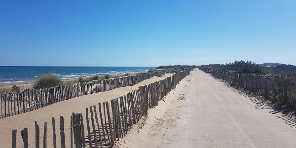 Voie verte du Lido entre Marseillan-plage et Sète