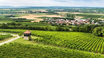 Blick auf Flonheim