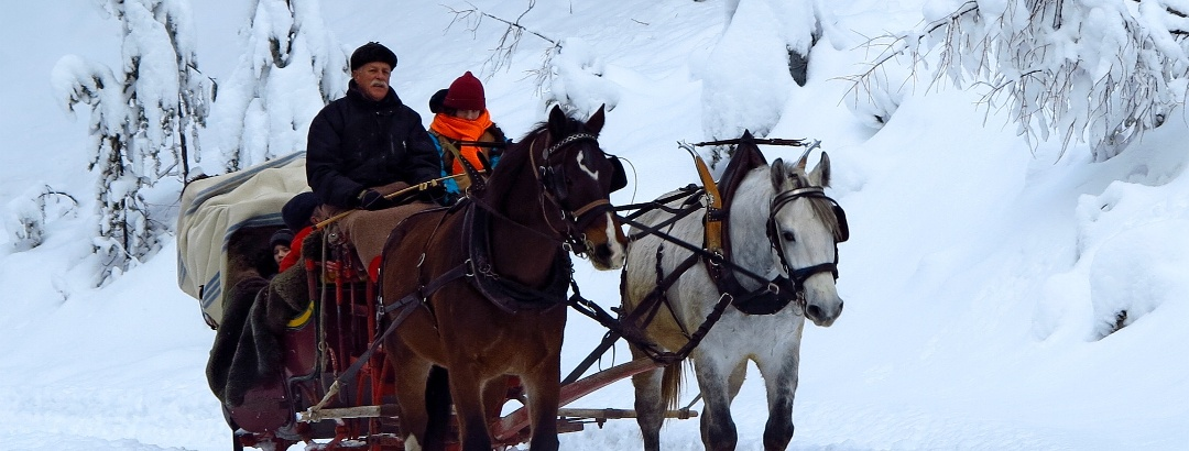 Mit dem Pferdeschlitten ins Val S-charl.