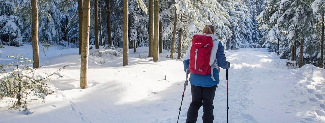 Schneeschuhwandern in Bad Peterstal Griesbach
