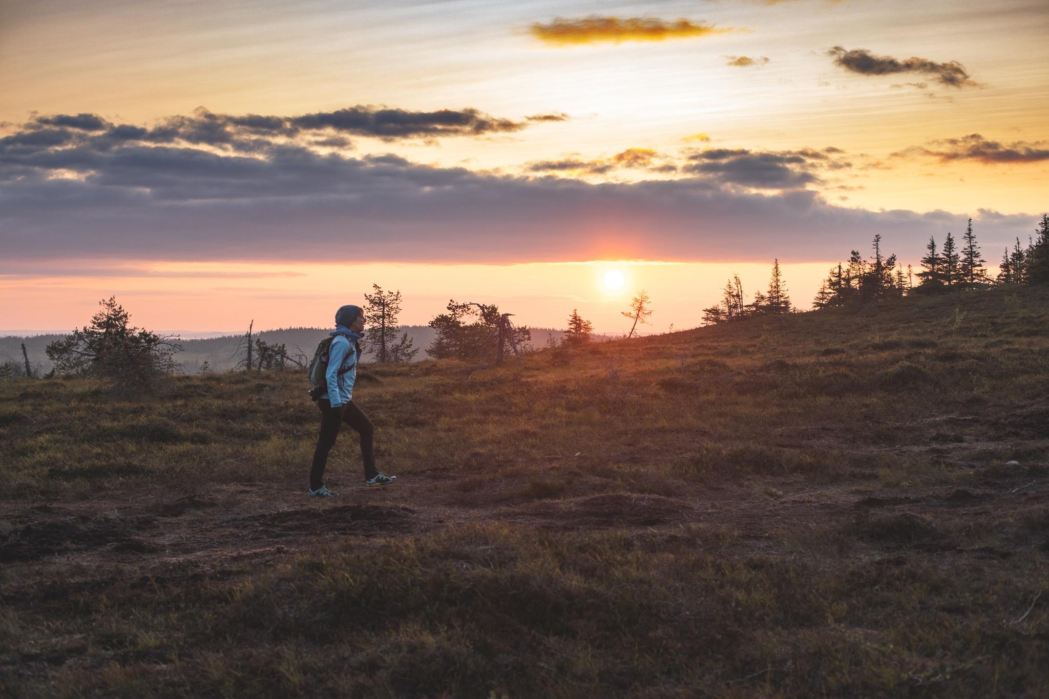 Riisin Rietas -Trail in Riisitunturi National Park in Posio ...