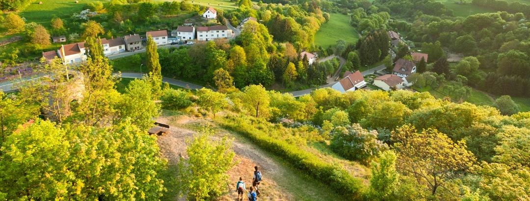 Die Burgruine Falkenstein auf dem Pfälzer Höhenweg