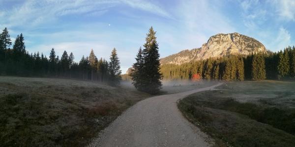 Herbstmorgen im Schönmoos