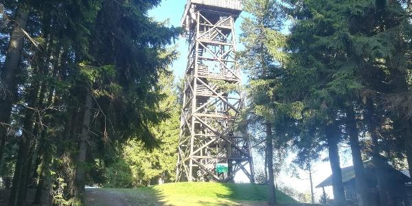 Alpannonia Weitwanderweg - Aussichtswarte am Hutwisch