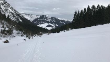 Blick zurück ins Wildental