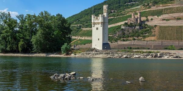 Mäuseturm und Ruine Ehrenfels