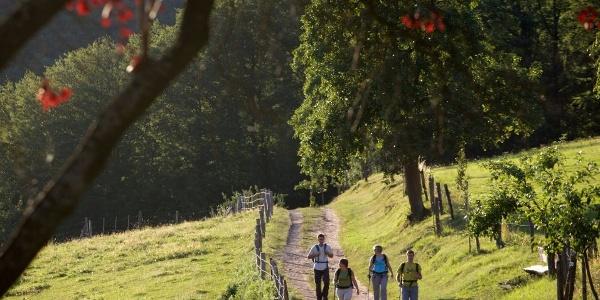 En randonnée